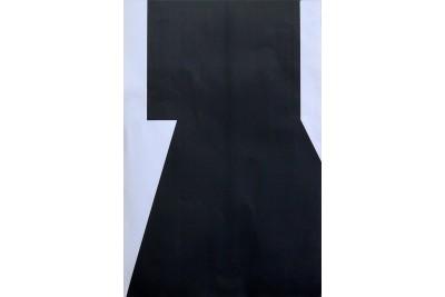 Мишень №6Б (грудная) 470*350мм